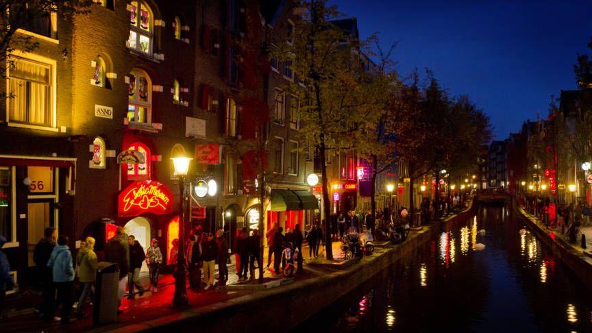 De Amsterdamse Wallen